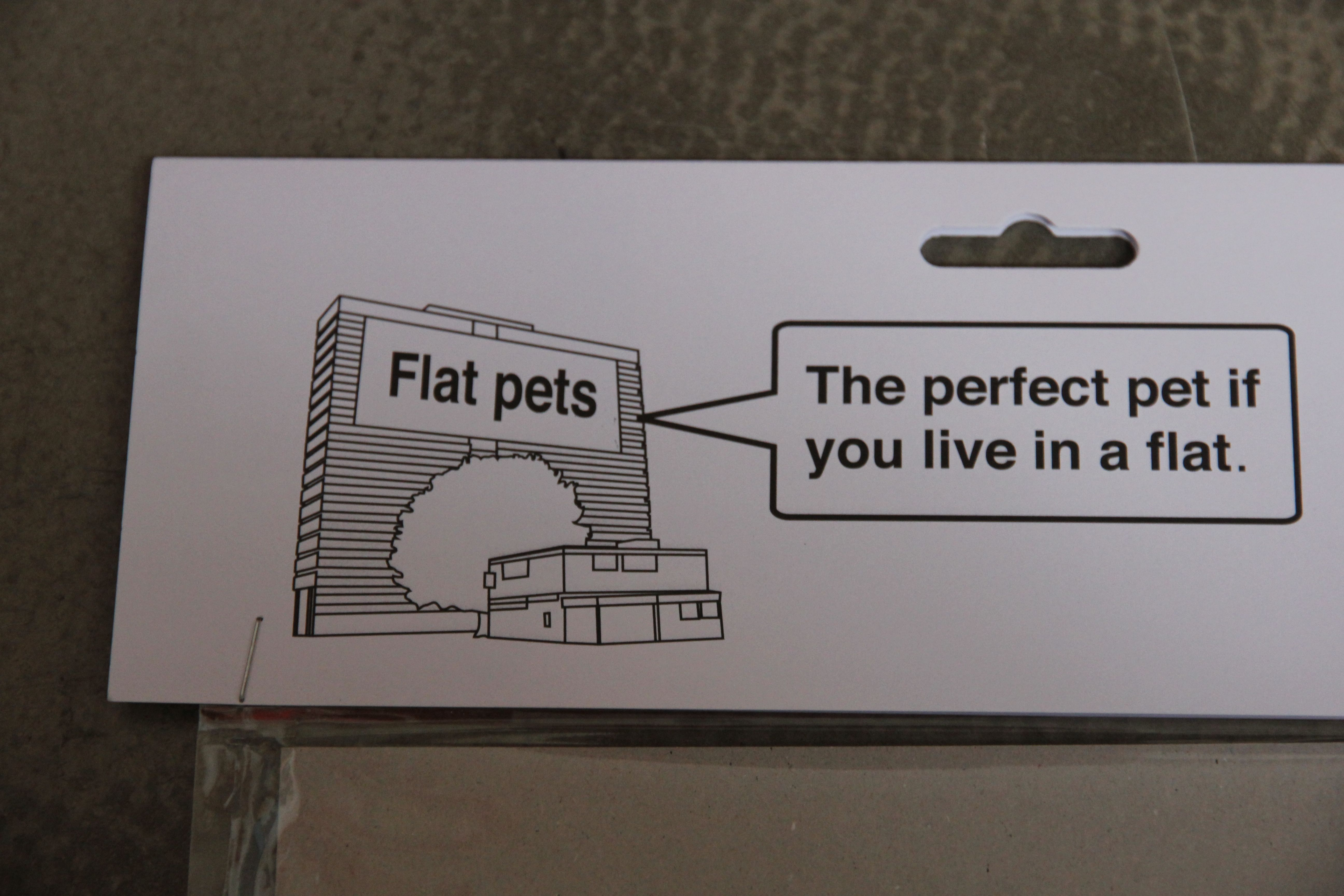 flat pet the perfect